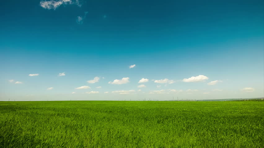 Gorgeous Blue Sky With Green Grass Animated Stock Footage