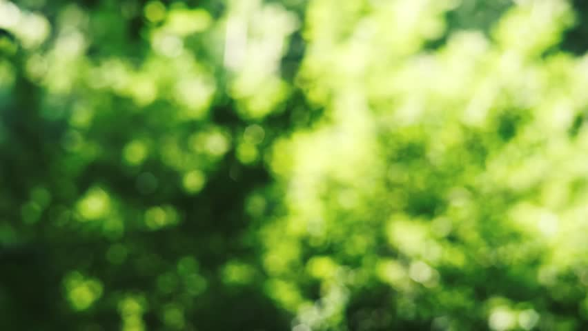bokeh-background-hd