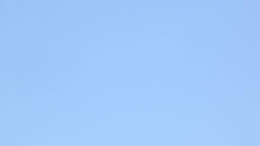 Modern white airplane fast flies in clean blue sky #10211132