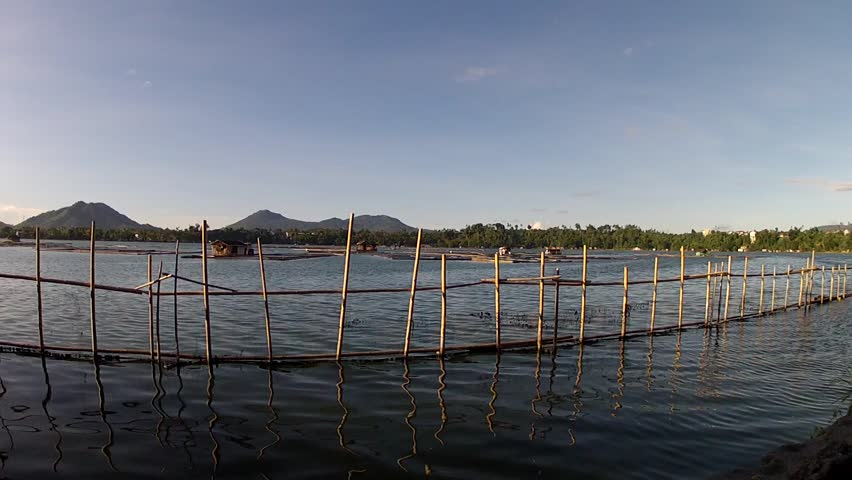 Laguna Philippines March 2 2015 Bamboo Pole Used To Make Fish Pen Fence At Lake Shore