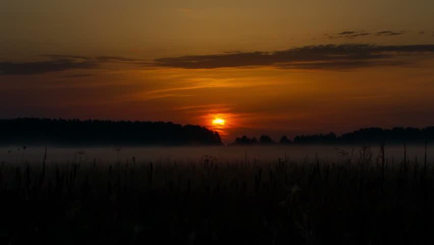 sunrise over field timelapse,  Sunrise over wild field, mist rises over the field, morning mist over the field, Landscape Timelapse, Rural countryside landscapes natural backgrounds