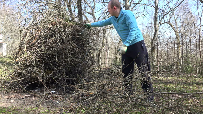 Tired gardener farmer man carry cut tree branches twigs and put in pile. Spring time works after fruit tree pruning. Worker in blue jumper. 4K UHD video clip. - 4K stock footage clip