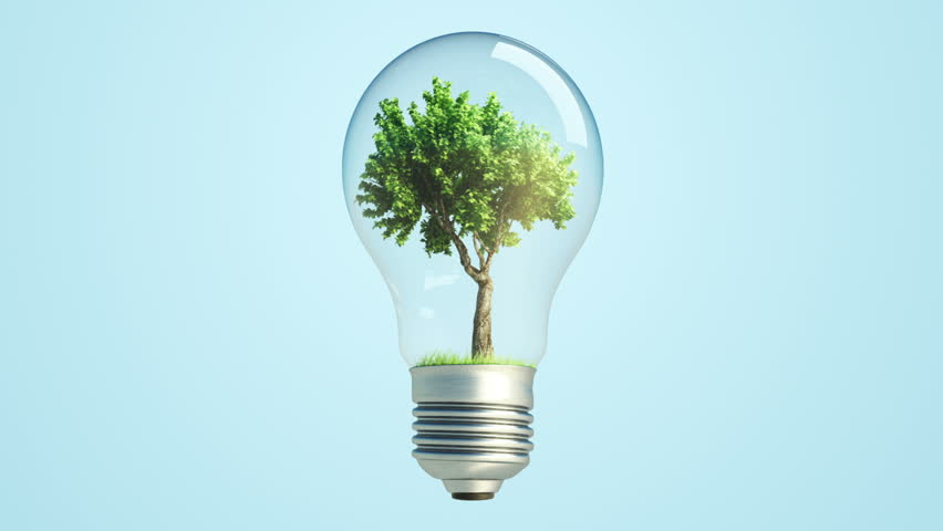 360 Rotation Of Green Tree Inside A Bulb Lamp With