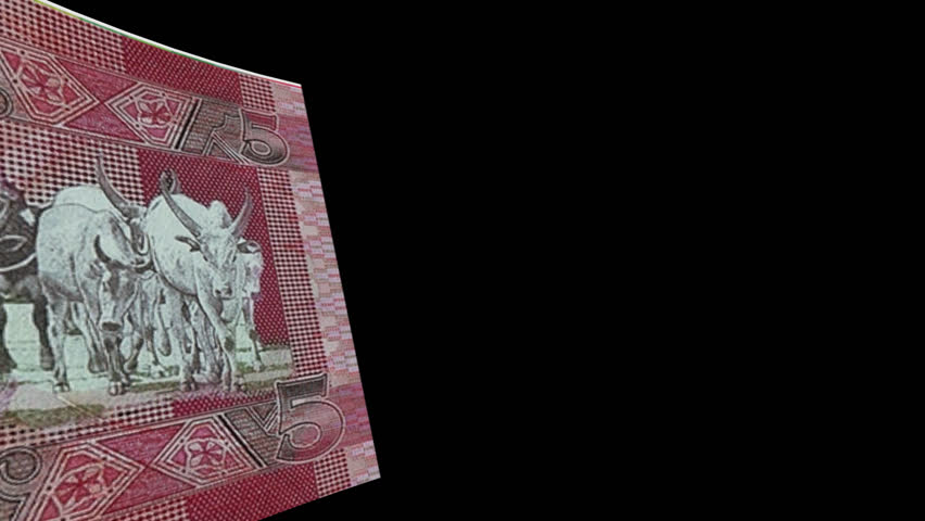 South Sudan Transition- Video wiper simulates South Sudan banknote from left to right with alpha channel (transparent background) in full hd format