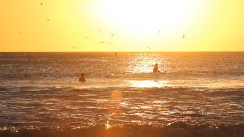 Surfers at sunset waiting for waves. Playa Grande, Costa Rica.  - HD stock video clip