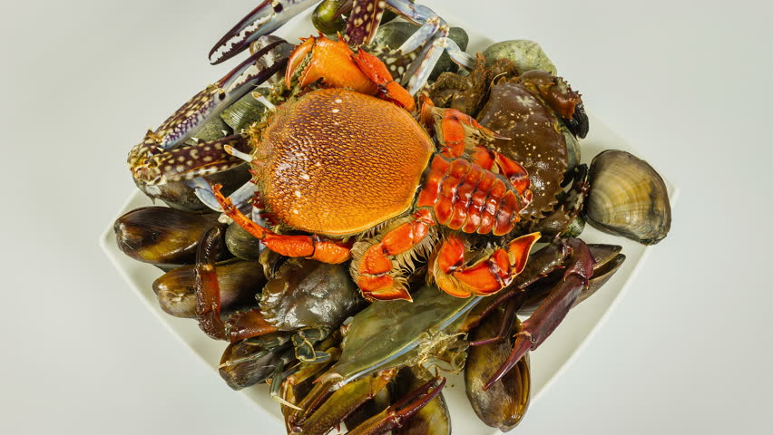 Seafood, crabs, mussels and sea mussels on a plate close-up rotation