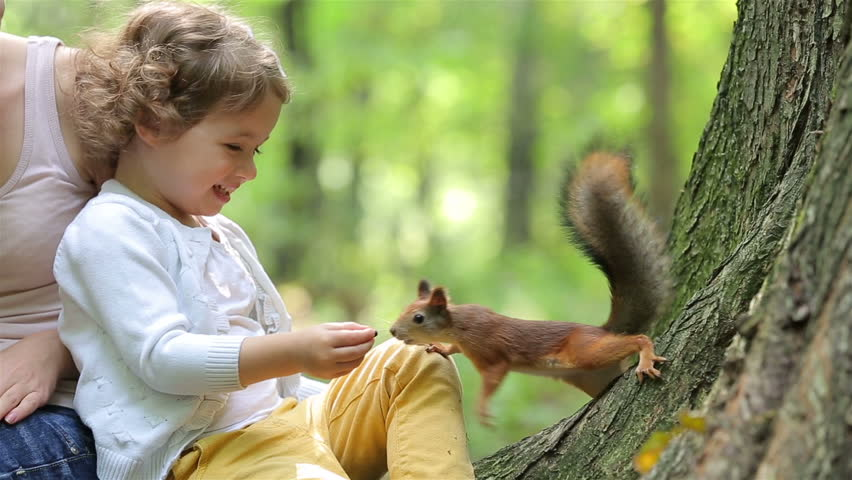 A cute little girl feed the red squirrels in the Park. #11440541