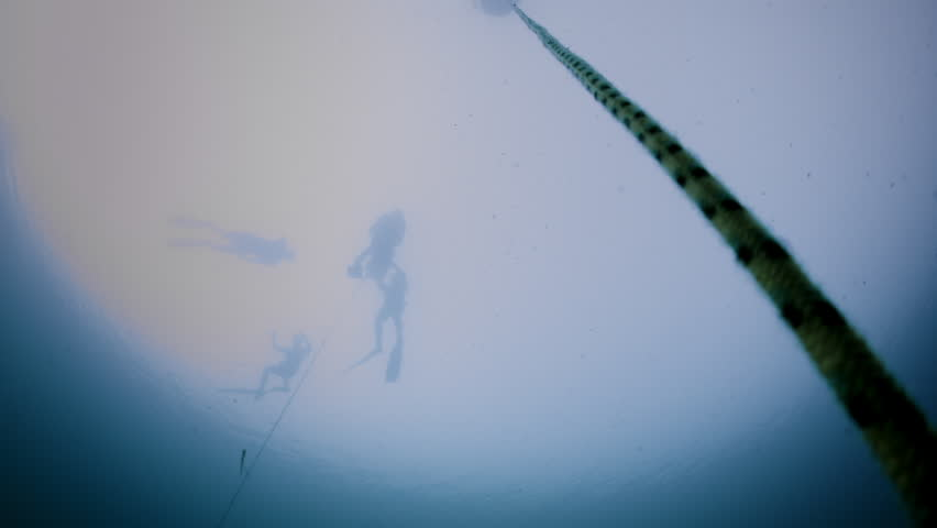 Underwater video of a Freediver in silhouette going down in Free Immersion using a Rope (Transition to black).