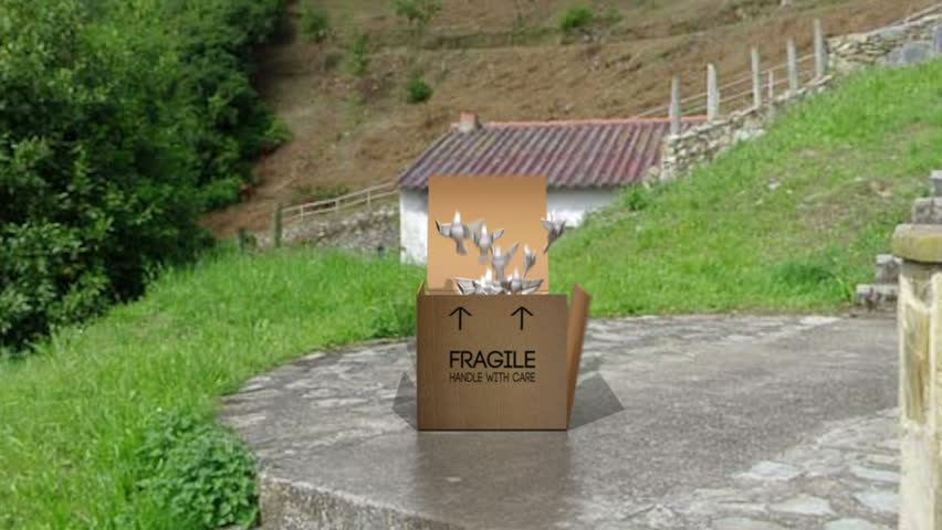 Cardboard type box unfurls to reveal Doves which flap and fly upwards.