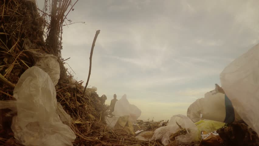 man unemployed  dump homeless dirty looking food waste in a landfill social  video - HD stock footage clip