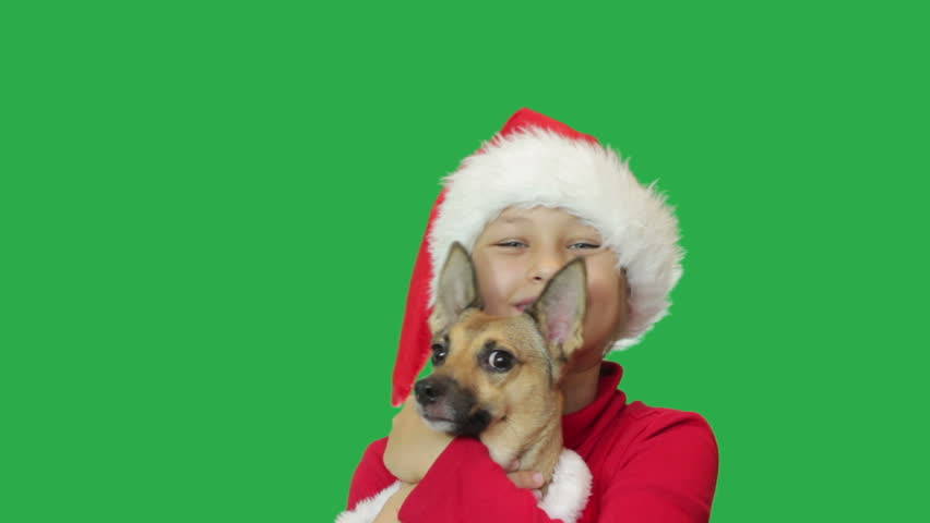 Kid and dog on green screen - HD stock footage clip