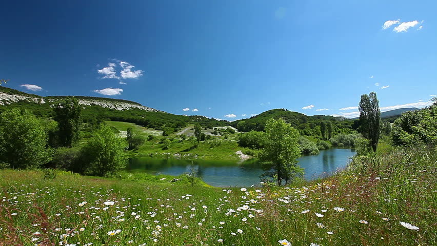 valley with river and chamomile flowers - HD stock video clip