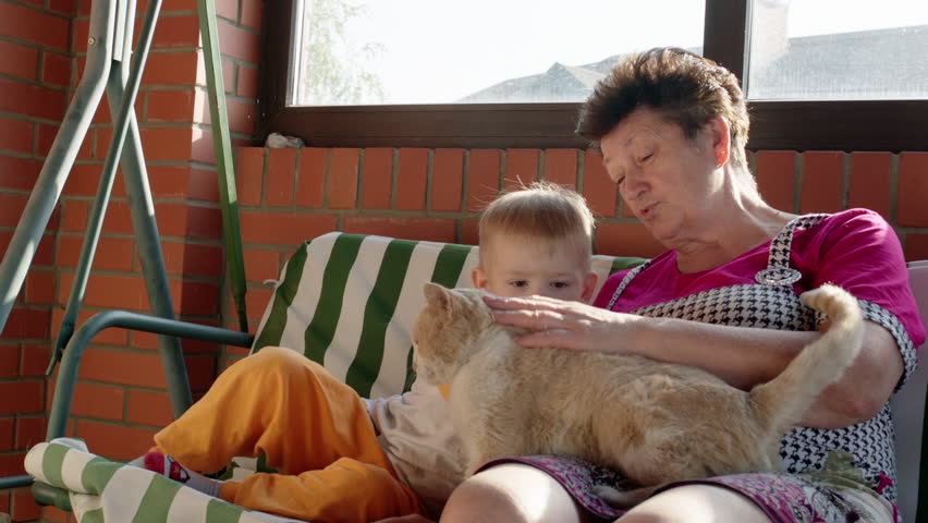 Little boy and his grandmother are sitting on the garden swing bench and petting a red cat. - HD stock video clip