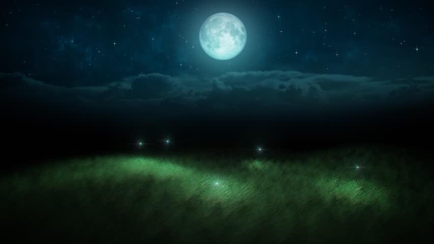 Fireflies loop