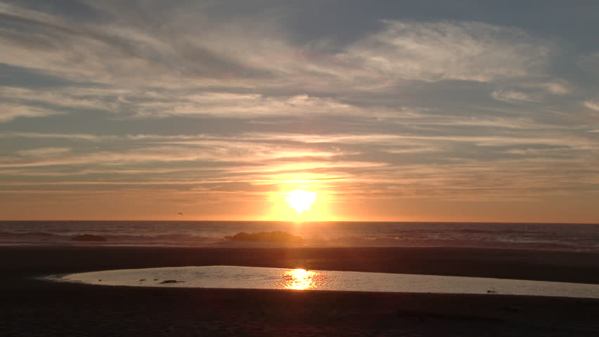 Person walking with dog running through water as sun sets over the Pacific Ocean in Oregon.
