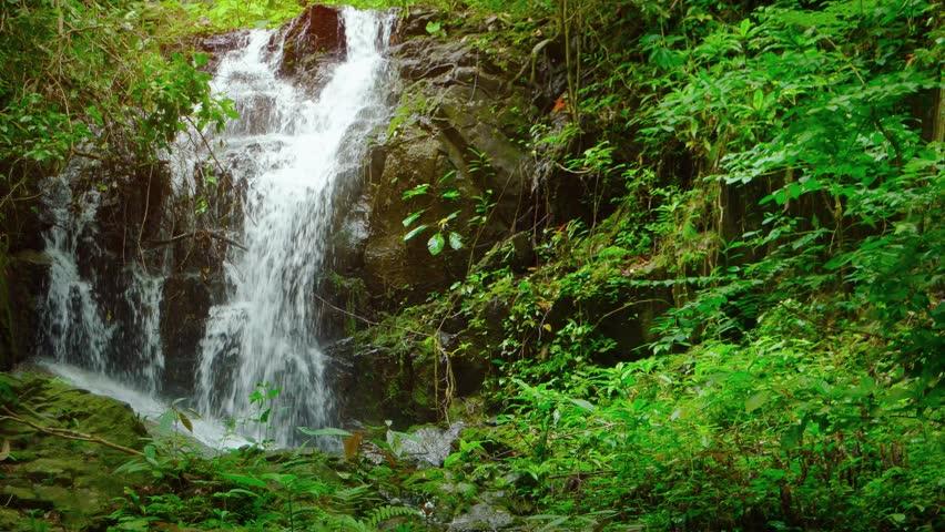 Tropical Island Beach Ambience Sound: A Tropical Waterfall Flows Through A Dense Rainforest In