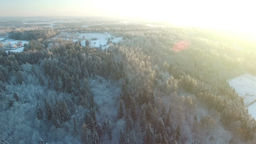 AERIAL: Beautiful flight down above frozen forest. Winter sunset