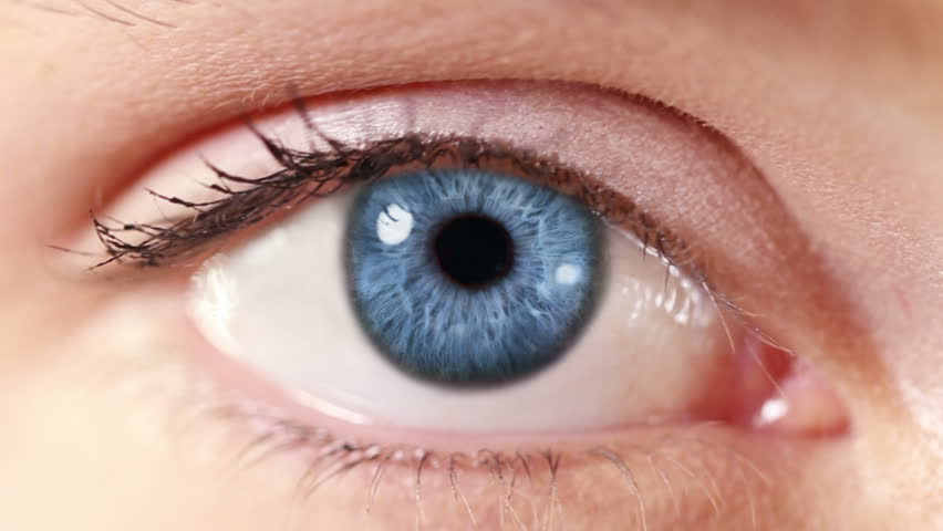 Human Eye. Blue and green. Blue and regular skin. 2 in 1. Close-up of a colored eye blinking. Each video is loopable.   Shutterstock HD Video #13807586