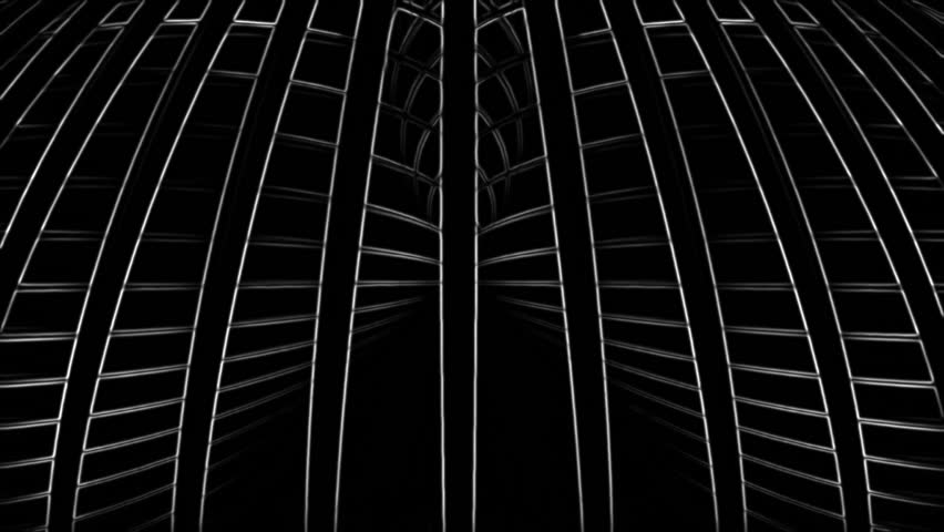 White 3d lines rotating in space on a black background. Contrasty outlined look. Version 10 | Shutterstock HD Video #13941353