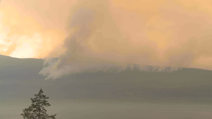 Forest fire from across lake (time-lapse) - HD stock footage clip