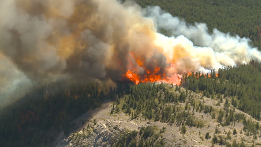 Forest fire big flames aerial - HD stock video clip