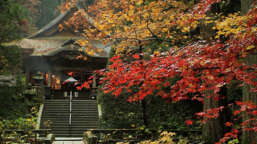 Autumn temple.
