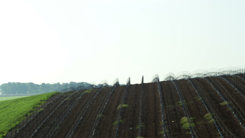 a lush green field in the foreground at the end of the shot,  in the Mount Tabor region of Israel.   02/23/2011