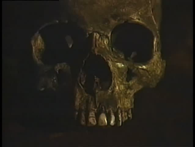 Close-up of human skull - SD stock video clip