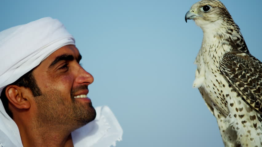 Tethered falcon on gloved wrist of male Arab owner | Shutterstock HD Video #18615656