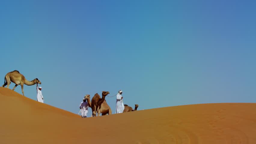 Middle Eastern Dromedary camels on Safari in desert sand dunes Arabia   Shutterstock HD Video #18797537