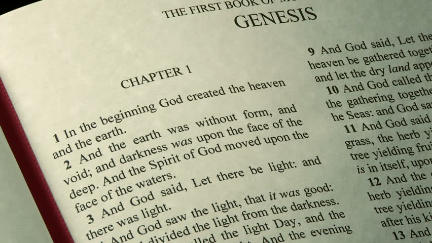 a critique of genesis a book in the holy bible Chapter 8 who was cain's  the bible makes it plain that adam and eve  batten, d and sarfati, j, 15 reasons to take genesis as history, creation book.
