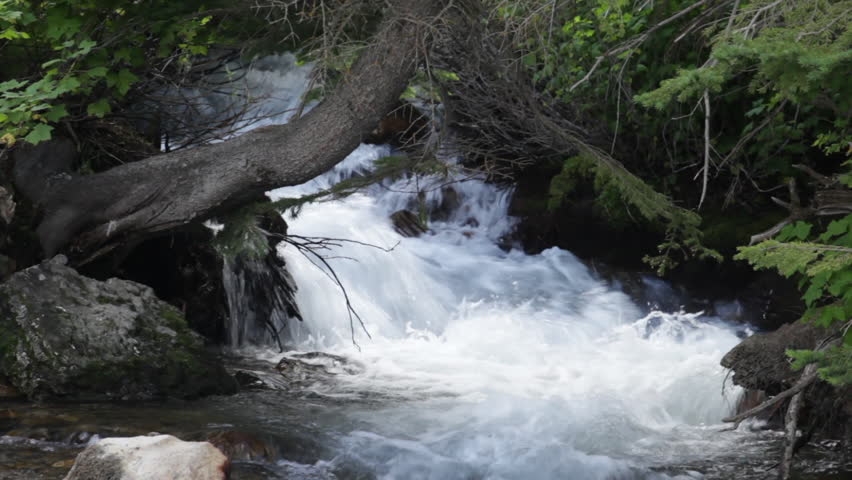 Fast Flowing Stream In Zions Stock Footage Video 2016188 ...