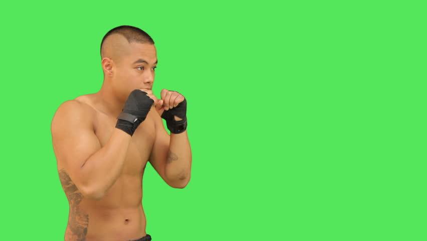 Thai boxer  - HD stock footage clip