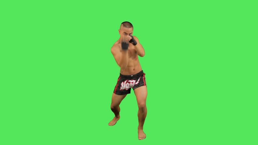Thai boxer fighting  - HD stock video clip