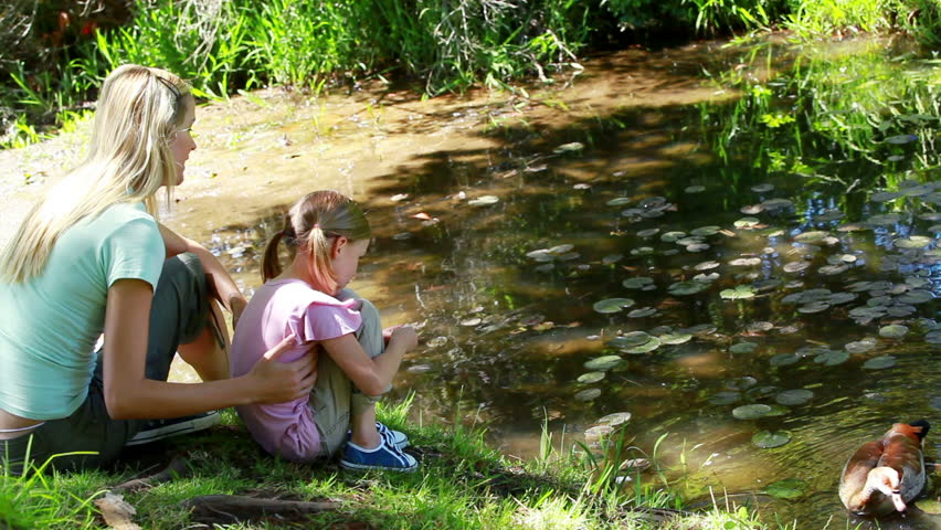Mother and daughter nourishing a duck in a park - HD stock footage clip