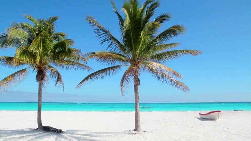 Caribbean Tulum white sand beach with two palm trees and boat #2418230
