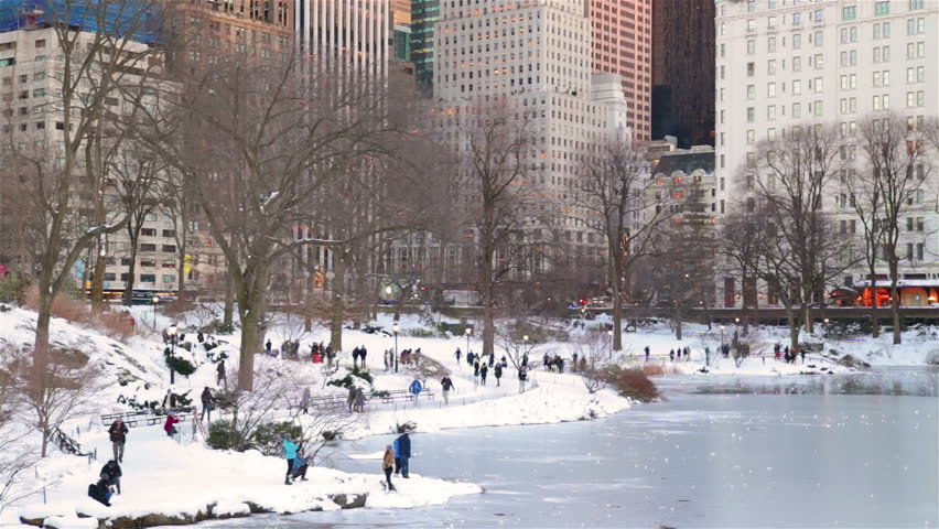 People walking on snow in Central Park New York City Winter | Shutterstock HD Video #24252257