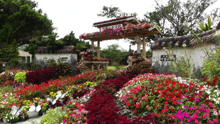 Japanese Garden Footage Stock Clips