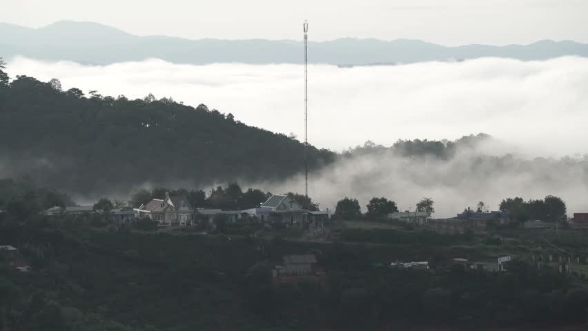 DA LAT, VIETNAM, Sep 23, 2015: pine forest, highland Da Lat city fog in the morning | Shutterstock HD Video #25001777