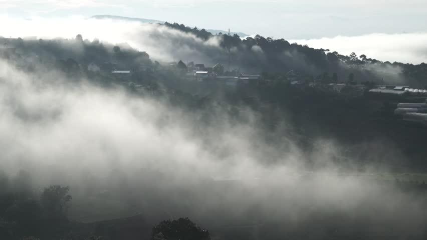 DA LAT, VIETNAM, Sep 23, 2015: pine forest, highland Da Lat city fog in the morning | Shutterstock HD Video #25001786