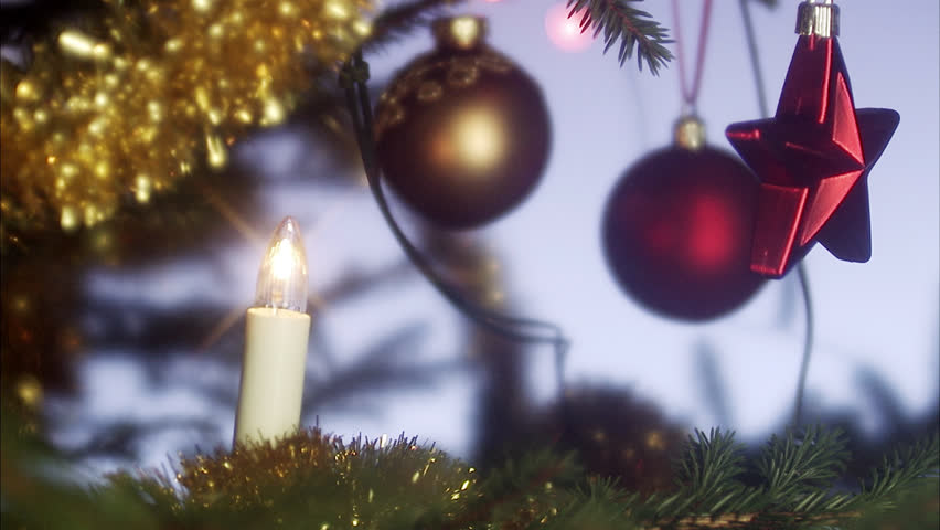 A Christmas tree, close-up.