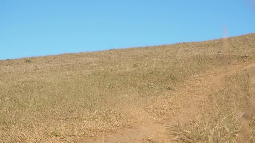 Hikers traveler girl hiking on hill | Shutterstock HD Video #25175774