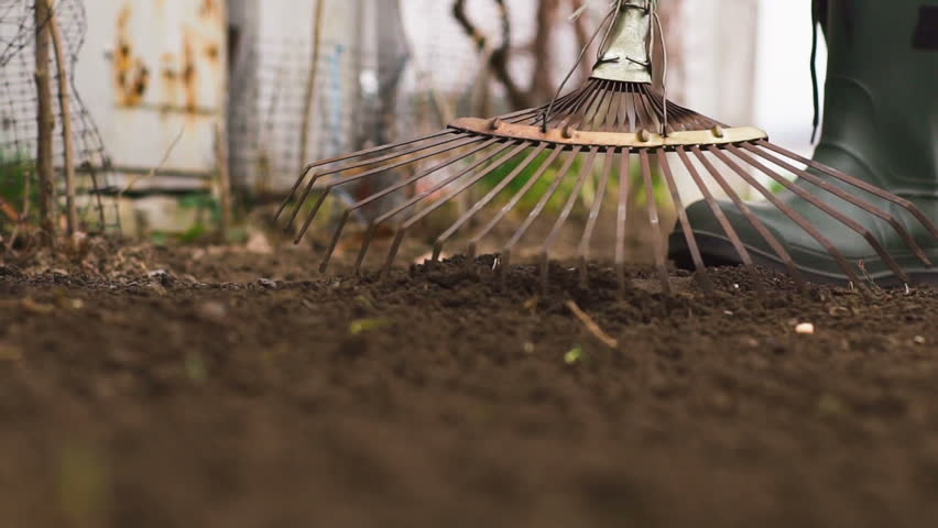 Gardener wearing rubber boots raking soil on sunny day. slow motion | Shutterstock HD Video #25181993