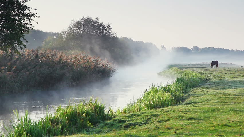 Mist rises over the water in the morning sun. Dramatic and picturesque scene. Wonderful natural background. Location place Ukraine, Europe. Explore the world's beauty. Shooting in HD 1080 video. | Shutterstock HD Video #25244372