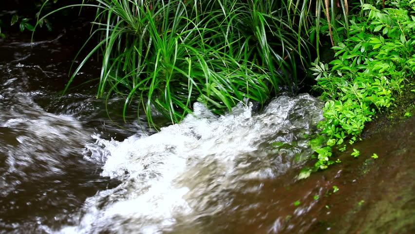 water flow - HD stock footage clip