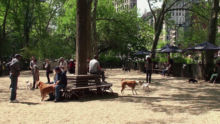 Dog Park Madison Sd