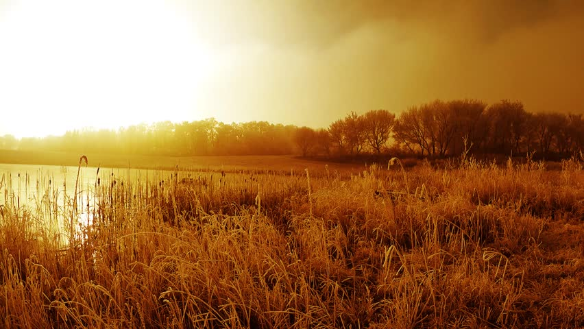 Landscape around the pond at sunset. | Shutterstock HD Video #25697126