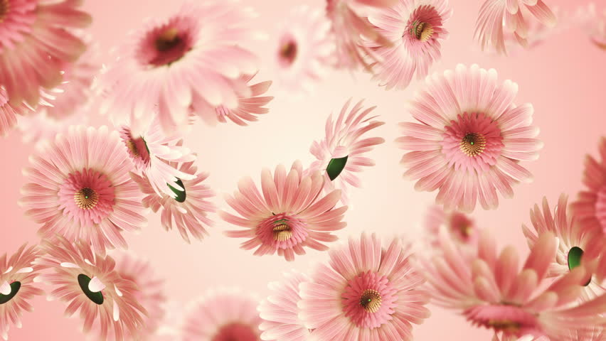 Animation flying of realistic flowers buds on clear and bright background. Animation of seamless loop.   Shutterstock HD Video #26214806