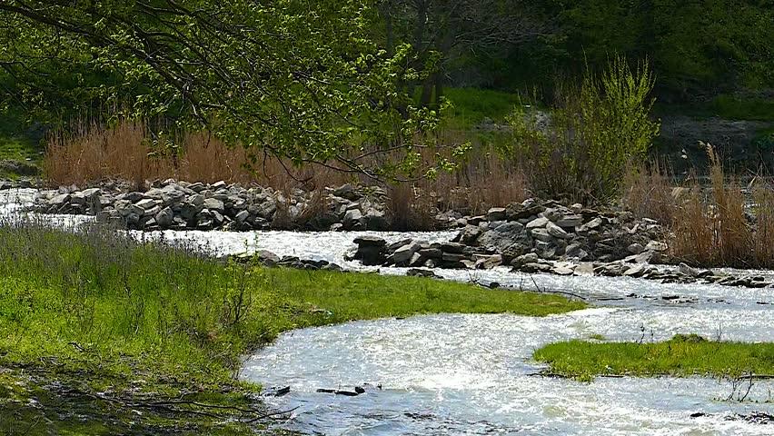 River #26345054