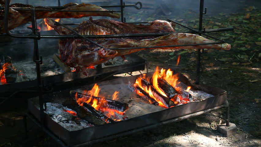 A pig, roasted whole, over a fire. - HD stock video clip